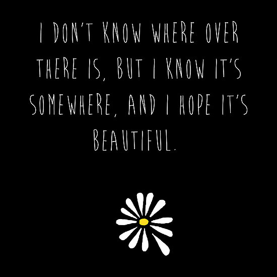 Quotes - looking for alaska